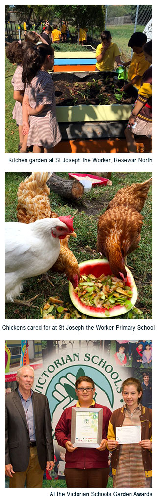 Image 1 - Kitchen garden at St Joseph the Worker, Resevoir North. Image 2 - Chickens cared for at St Joseph the Worker Primary School.